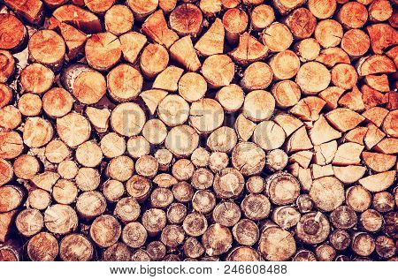 Background Of Wooden Logs. Year Rings. Wood Industry. Deforestation Theme. Woodpile Scene. Red Photo