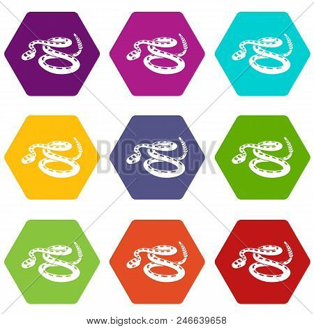 Rattlesnake icons 9 set coloful isolated on white for web poster