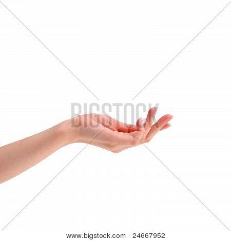 blank hand
