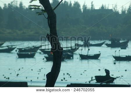 A Bay In Vietnam Filled With Small Fishing Boats, Including Traditional Round Boats. A Fisherman Is