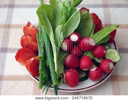Garden Vegetables On A Plate, Omsk Region, Siberia, Russia