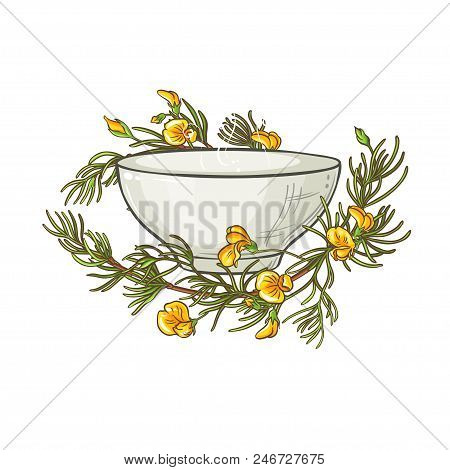 Rooibos Tea In Tea Bowl Illustration On Whte Background