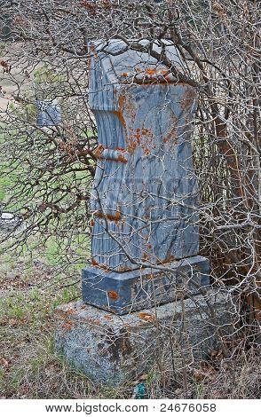 Old Gravestone In Pioneer Graveyard Overgrowth