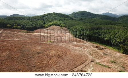 Deforestation aerial photo. Forest destroyed for palm oil production