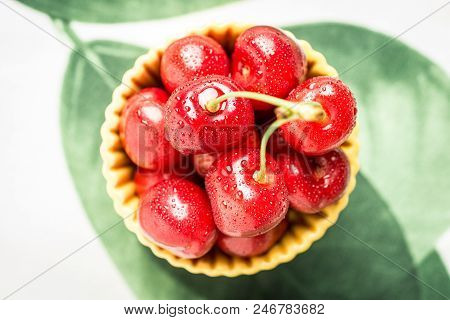 Summer Concept Wet Fresh Red Cherries Ready To Eat