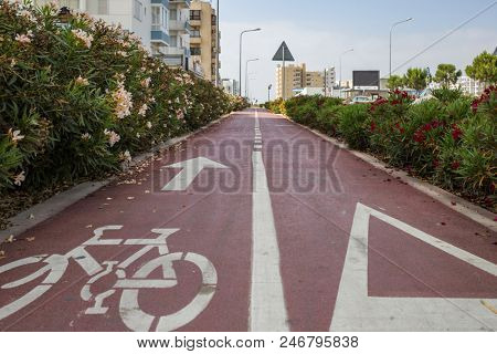 Bicycle lane surrounded by red and white flowers, red asphalt with white arrow for bikes. City, sky backdrop.