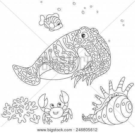 Spotted Cuttlefish And A Small Striped Fish Swimming Over A Coral, A Funny Pink Crab And A Tropical