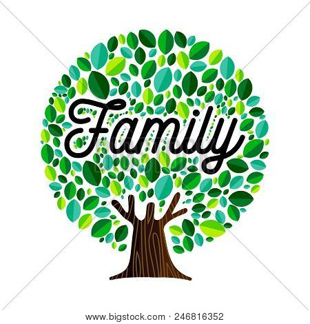 Family Tree Illustration Concept, Green Leaves With Text Quote For Genealogy Design. Eps10 Vector.