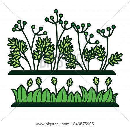 Green Grass And Flower Plants Or Decorative Verdure. Vector Flat Cartoon Floral Garden Bushes And Gr