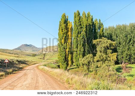 Autumn Farm Landscape On Road R396 Between Rhodes And Barkly-east In The Eastern Cape Province