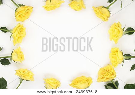 Twelve Yellow Roses Arranged As Oval Frame Border. Yellow Roses Surround The Edges Of White Paper. B