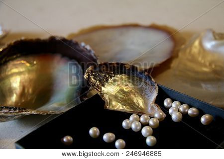 Pearls With Pearl Shells, Pearl Oysters Shells
