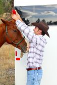 Young cowboy grooming his horse at the trailor poster
