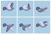 Vector illustration of cartoon flying pigeon animation sprite poster