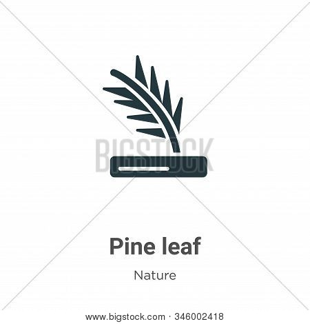 Pine leaf icon isolated on white background from nature collection. Pine leaf icon trendy and modern