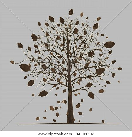 Seasonal tree, falling leaves