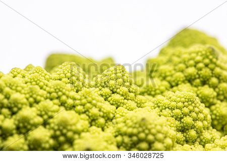 Romanesco cauliflower is an edible flower originated in Italy poster