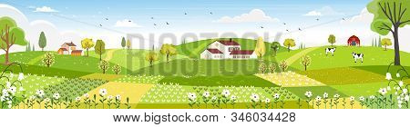 Rural Farm Landscape With Green Fields, Farm House, Barn, Animals Cow, Blue Sky And Clouds,  Vector