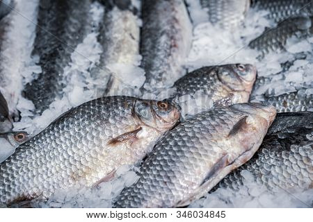 Fresh Fish On Ice. Sale Of Fresh Frozen Fish On Farmers Bazaar. Open Showcases Of Seafood Market. Fi