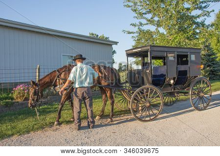 Amish Man And Buggy: Amish Man Unhitching Horse From Buggy