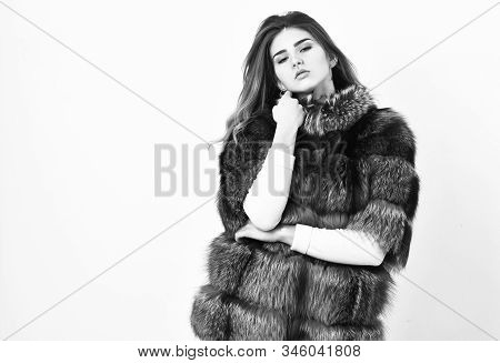 Fur Store Model Enjoy Warm In Soft Fluffy Coat With Collar. Woman Makeup And Hairstyle Posing Mink O