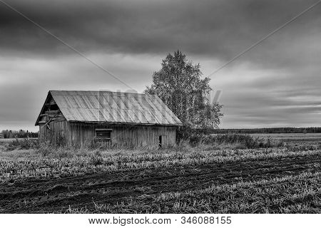 An Old Barn House Standing By The Plowed Field On A Grey Autumn Day At The Rural Finland. The Colour
