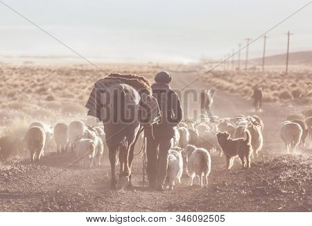 Gauchos ahd herd of goats in Patagonia mountains, Argentina