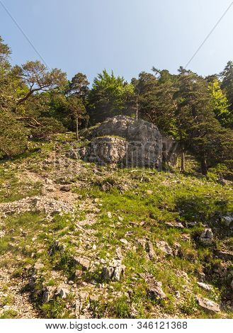 Mountain Scenery With Limestone Rocks, Grass And Trees Bellow Tlsta Hill In Velka Fatra Mountains In