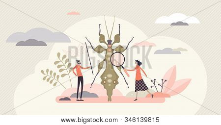 Entomology Field Concept, Flat Tiny Person Entomologists Vector Illustration. Catching Insects And G