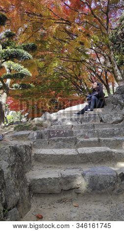 Himeji, Japan- 30 Nov, 2019: Tourists Watch Beautiful Autumn Leave Around Himeji In Autumn Season. H
