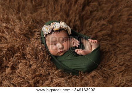Newborn Asian Girl On Brown Fur With Folded Arms With Floral Ornament On Her Head. First Photo. Head