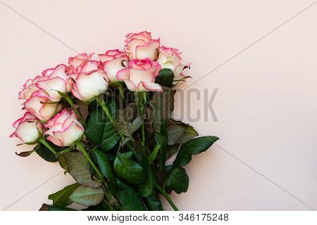 Bouquet Of Fresh Pink Roses On Pink Background. Top View. Flat Lay. Copy Space. Valentines Day, Moth