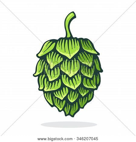 Vector Illustration. Green Cone Of Hop. Symbol Of Beer, Pub And Alcoholic Beverage. Graphic Design W