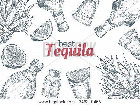 Tequila Label. Mexican Alcohol Drink Drawing. Bottle, Shot Glass, Salt Shaker, Lime, Agave Frame Ske