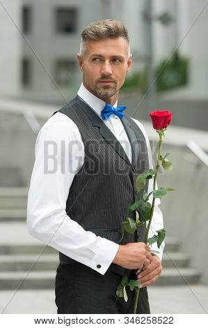 Real Gentleman Holding Rose In Hand. Be My Valentine. Womens Day Concept. Man With Rose Flower. Man