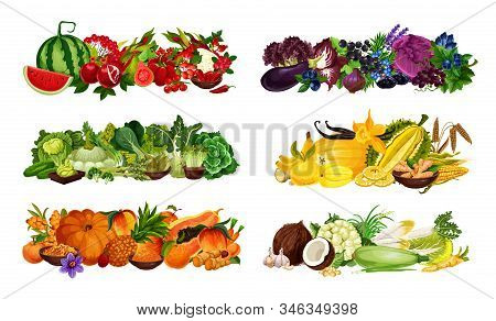 Color Diet Fruits, Berries And Vegetables Sorted By Red And Purple, Green And Yellow, Orange And Whi