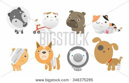 Set Of Cute Cats And Dogs Get Sick, Injured, Hurt, Wounded, Vector Illustration Isolated On White Ba