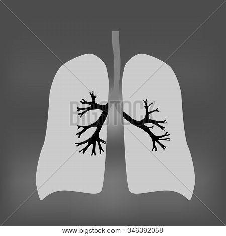 Illustration Of Human Respiratory Tract System Consisting Of Lungs, Trachea And Bronchi On Black Bac