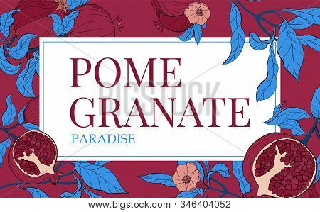 Vector Gorizontal Banners With With Pomegranate Fruits On Burgundi Background. Floral Design For Cos