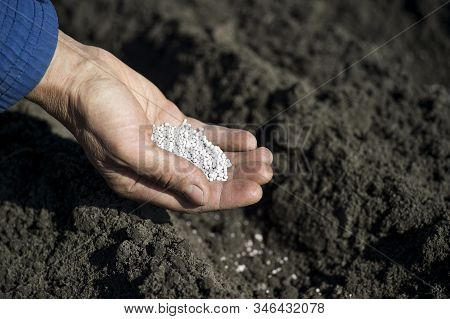 The Hand Of A Woman Farmer Holding A Handful Of White Fertilizer Granules On The Background Of An Ea