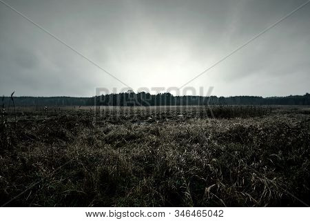 Dark Autumn Field With Dramatic Cloudy Sky. Nature.