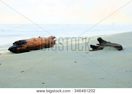 Desolate Rural Sandy Beach With Driftwood Taken On The Rugged Northern California Coast In Eureka, C