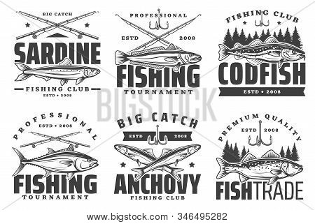 Fishing Sport Icons, Sardine And Anchovy, Codfish Icons. Fishery Equipment, Fishing Rods And Baits.