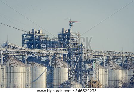 Cylindrical Silos For Grain Storage. Modern Grain Terminal. Elevator. Grain Storage And Processing.