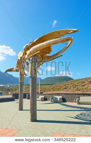 Los Silos, Tenerife, Spain - December 10, 2019: Skeleton of a Sei Whale at promenade on the coast in Los Silos, The Canary Islands