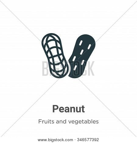Peanut icon isolated on white background from fruits collection. Peanut icon trendy and modern Peanu