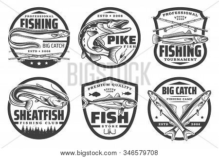 Fishing Sport, Fisherman Hobby Isolated Monochrome Logos. Vector Fishery Tackles, Crossed Rods, Pike