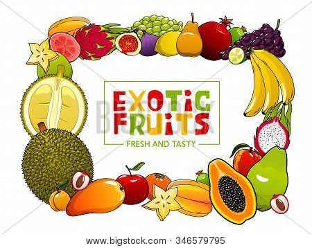 Exotic Fruits Frame Fresh Summer Food. Vector Papaya And Starfruit, Avocado And Banana, Grapes And P