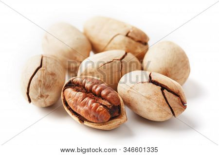 Pecan Isolated On White Background. Close-up, Macro. A Nut In A Shell.