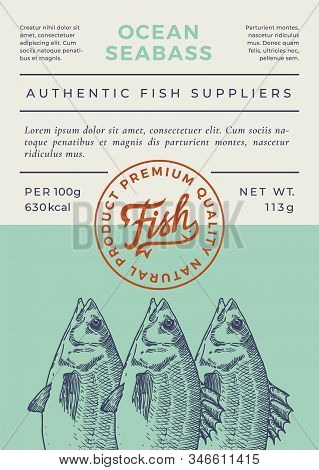 Ocean Fish Abstract Vector Packaging Design Or Label. Modern Typography Banner, Hand Drawn Seabass S